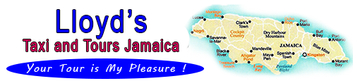 Lloyd's Taxi and Tours Jamaica.com - Lloyd's Taxi and Tours Jamaica.net - Lloyd's Transport Jamaica.com